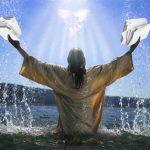 Iglesia católica avala milagro de la creación como proveedor