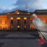 Disfraz de paloma de la paz será obligatorio para gabinete y negociadores