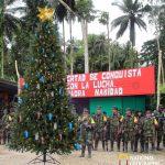 Con el árbol de navidad más grande del país, las Farc se suman a la celebración de la Navidad