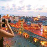 Reportan avistamiento de cartagenero en centro histórico de Cartagena