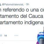 Paloma Valencia propone dividir en dos al Cauca