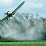 Incluirán coca en TLC con USA para quebrar a cultivadores y no tener que usar glifosato