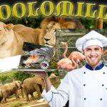 Zoológico de Pereira se transformará en piqueteadero de vanguardia
