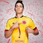 En las eliminatorias, Colombia será Sedal-Colombia