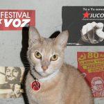Por culpa de su gato, Marxista abre los ojos y abraza el sistema