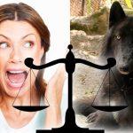 Lobo de Medellin demandará a señora a la que atacó