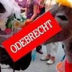 Festival del Burro de San Antero habría sido salpicado por dineros de Odebrecht.