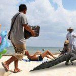 Con vendedores ambulantes y rumba de israelíes espantan a caimán del Tayrona