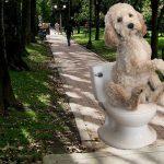 Perro aprende a controlar esfínteres para que no lo saquen más